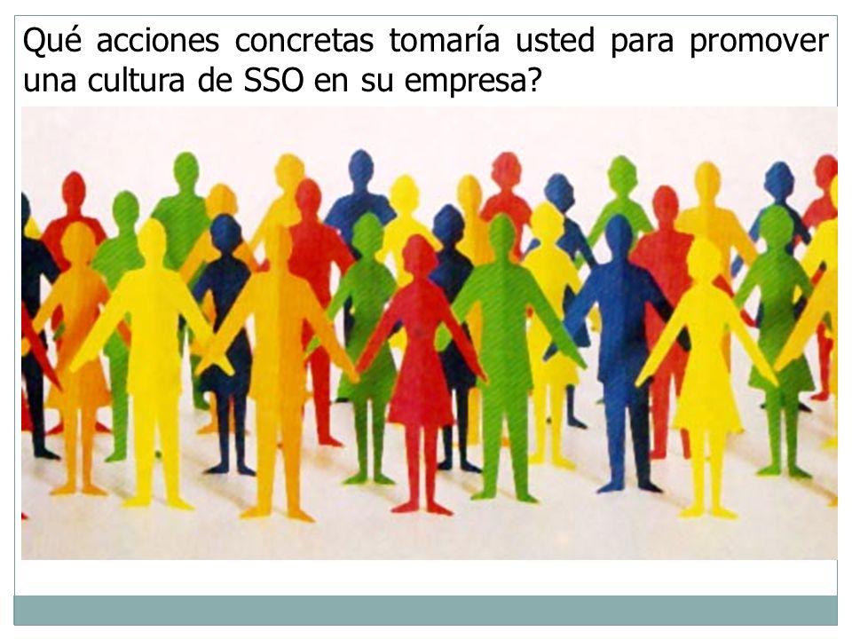 Qué acciones concretas tomaría usted para promover una cultura de SSO en su empresa