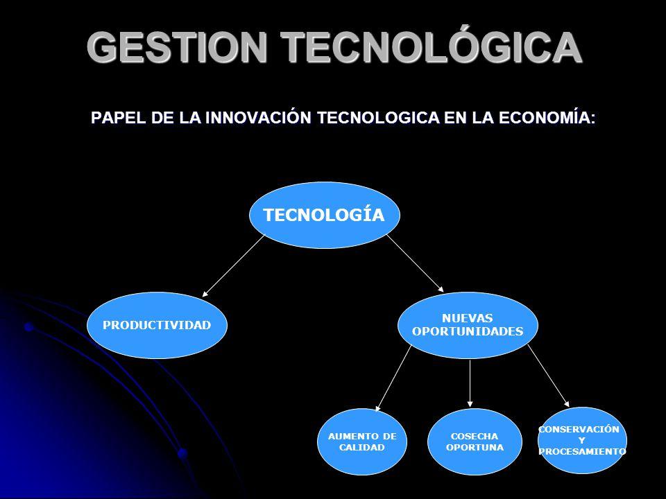 PAPEL DE LA INNOVACIÓN TECNOLOGICA EN LA ECONOMÍA: