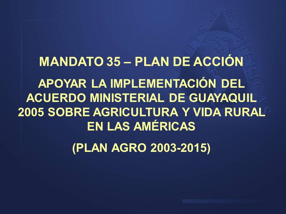 MANDATO 35 – PLAN DE ACCIÓN