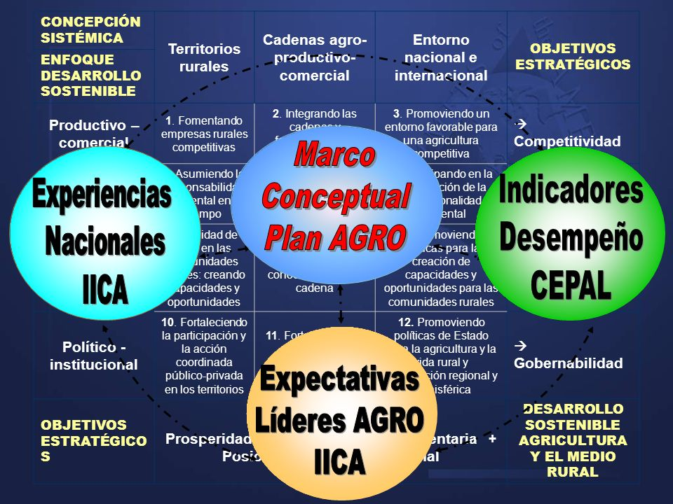 Marco Conceptual Plan AGRO Expectativas Líderes AGRO IICA Indicadores