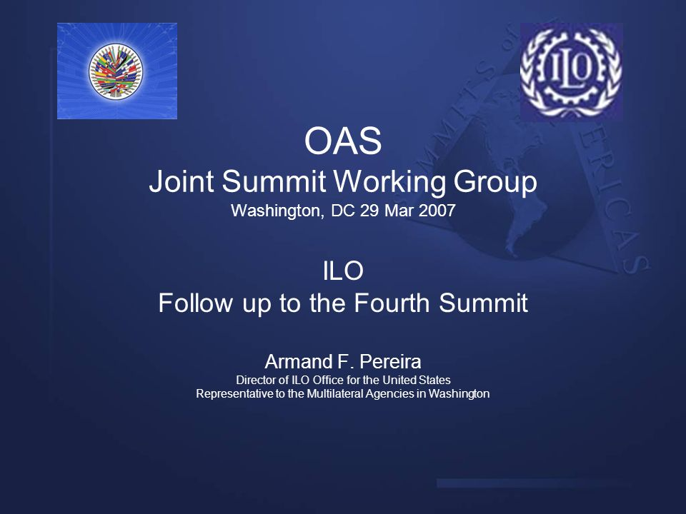 OAS Joint Summit Working Group Washington, DC 29 Mar 2007