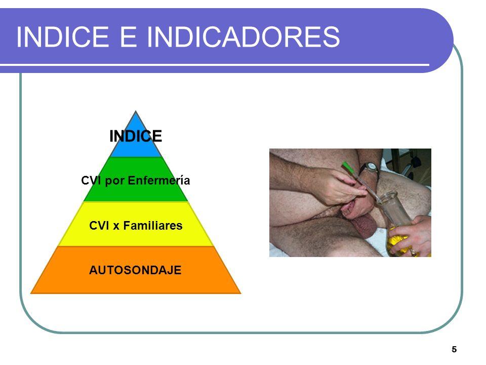 INDICE E INDICADORES