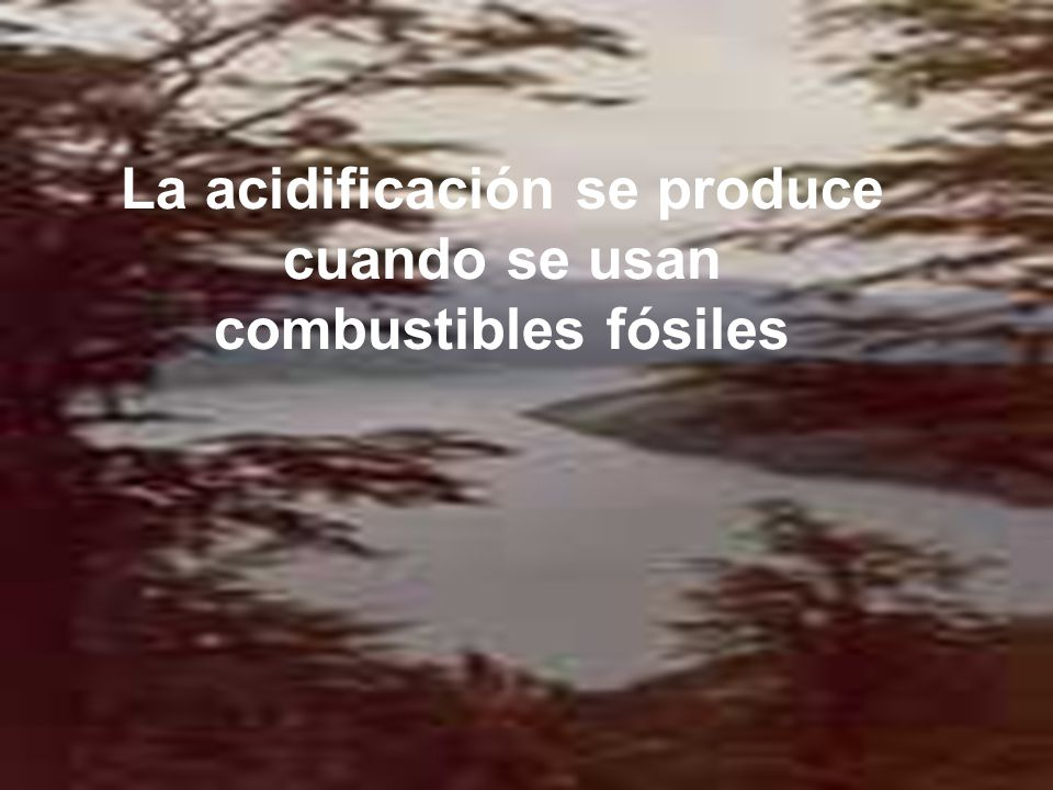 La acidificación se produce cuando se usan combustibles fósiles