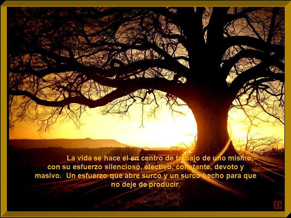 La vida se hace el en centro de trabajo de uno mismo, con su esfuerzo silencioso, efectivo, constante, devoto y masivo.