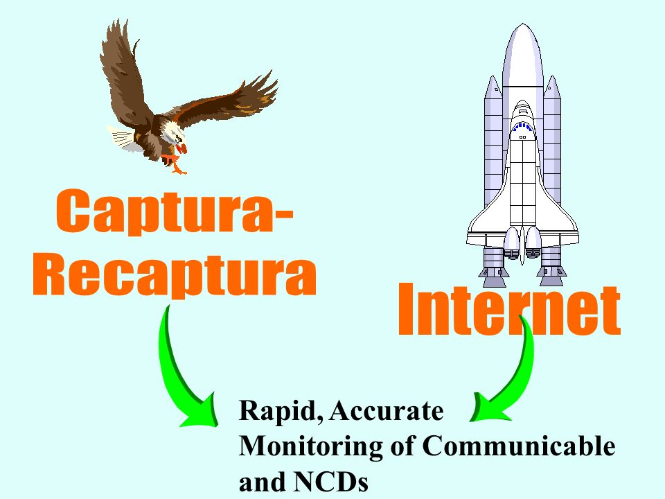 Captura- Recaptura Internet Rapid, Accurate Monitoring of Communicable