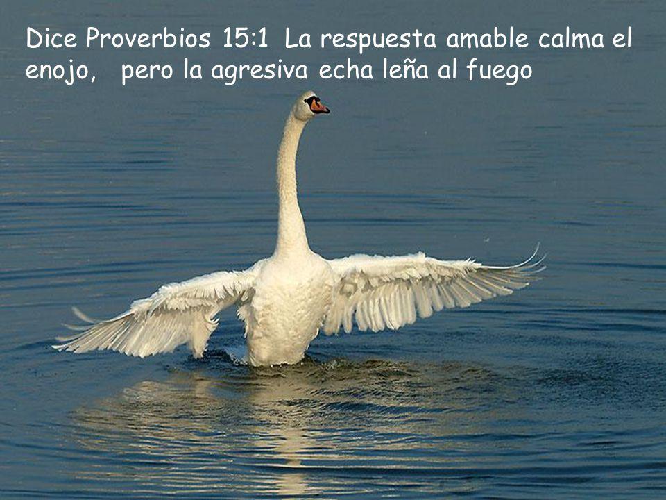 Dice Proverbios 15:1 La respuesta amable calma el enojo, pero la agresiva echa leña al fuego