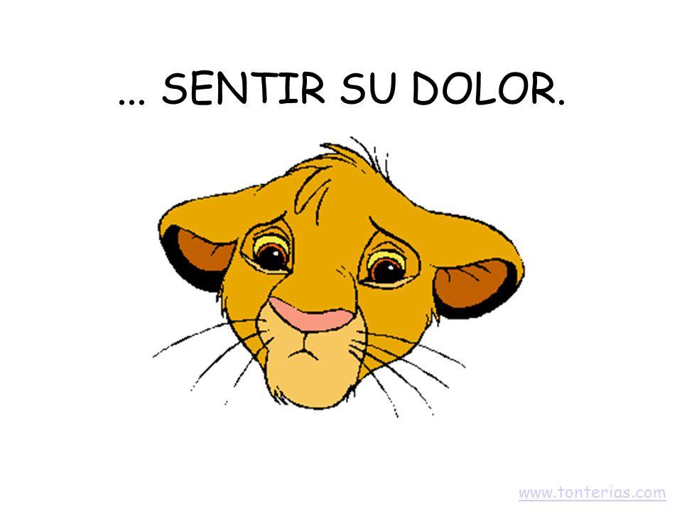 ... SENTIR SU DOLOR. www.tonterias.com
