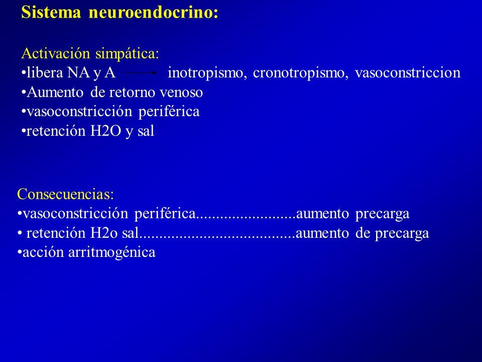 Sistema neuroendocrino:
