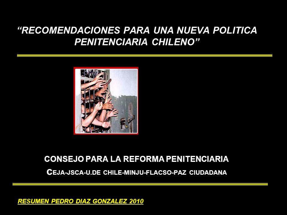 RESUMEN PEDRO DIAZ GONZALEZ 2010