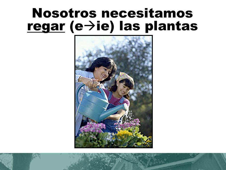 Nosotros necesitamos regar (eie) las plantas