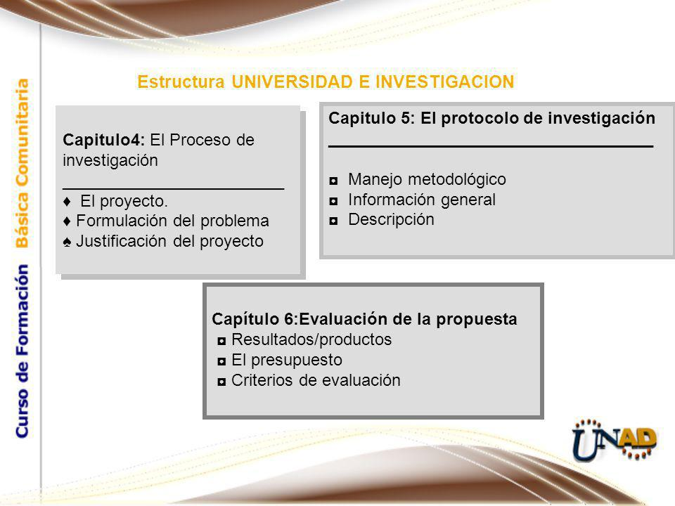 Estructura UNIVERSIDAD E INVESTIGACION