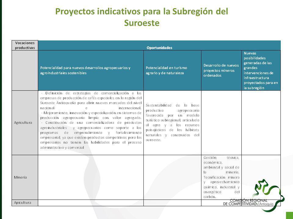 Proyectos indicativos para la Subregión del Suroeste