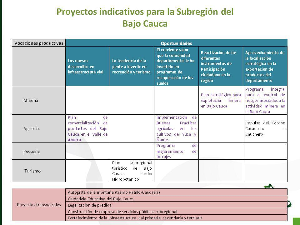 Proyectos indicativos para la Subregión del