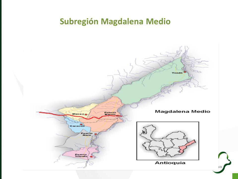 Subregión Magdalena Medio