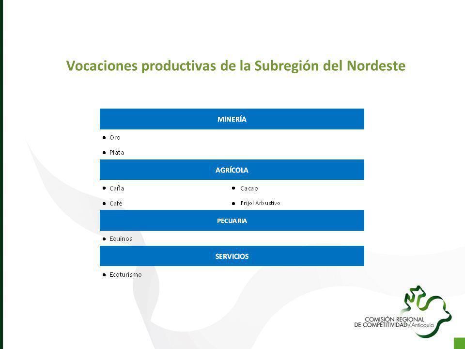 Vocaciones productivas de la Subregión del Nordeste