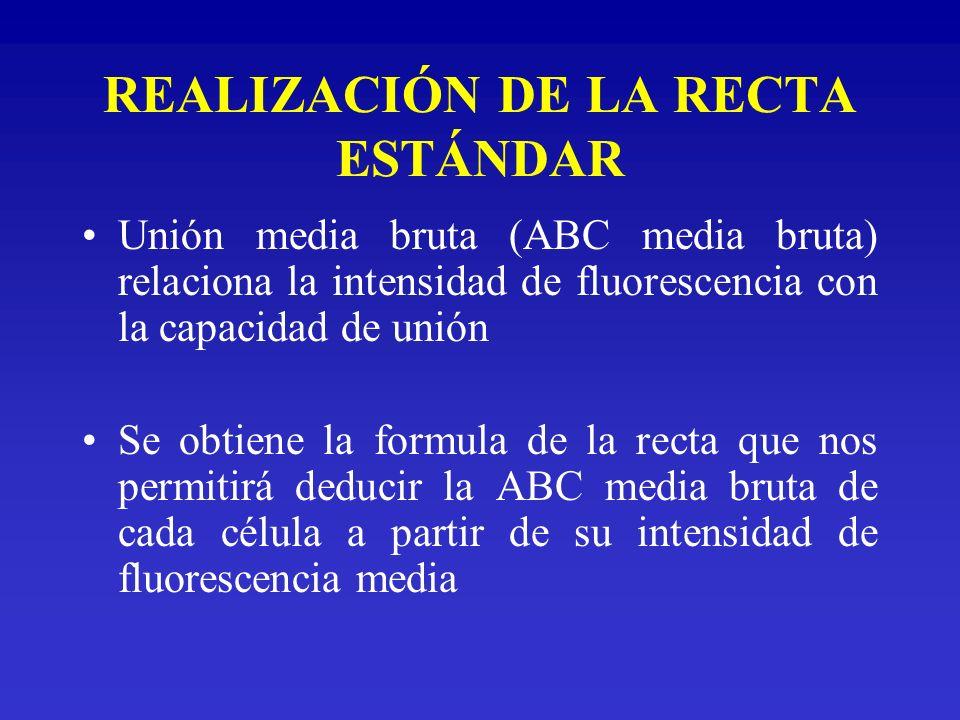 REALIZACIÓN DE LA RECTA ESTÁNDAR