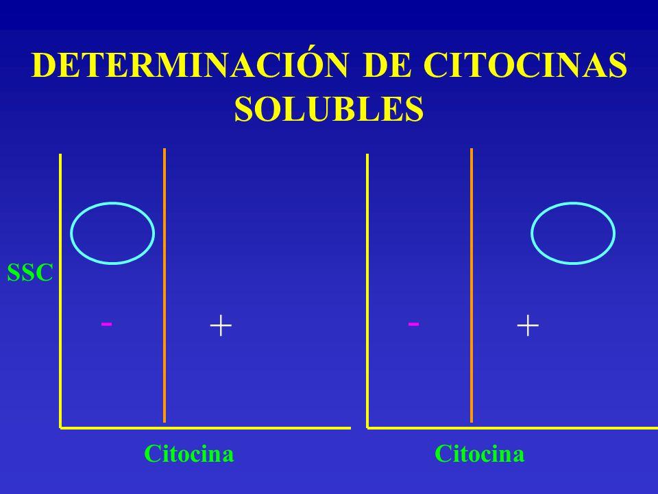 DETERMINACIÓN DE CITOCINAS SOLUBLES