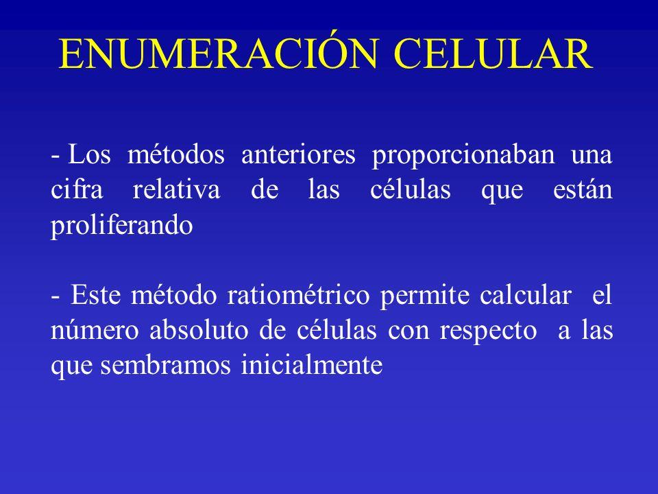 ENUMERACIÓN CELULAR Los métodos anteriores proporcionaban una cifra relativa de las células que están proliferando.