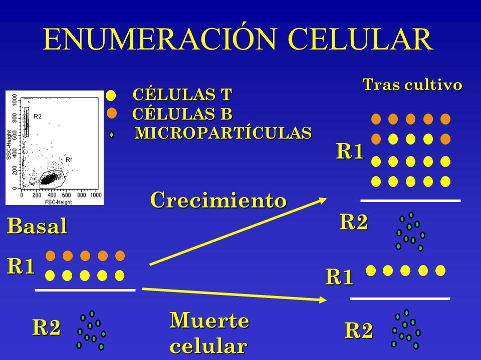 ENUMERACIÓN CELULAR R1 Crecimiento R2 Basal R1 R1 Muerte R2 R2 celular
