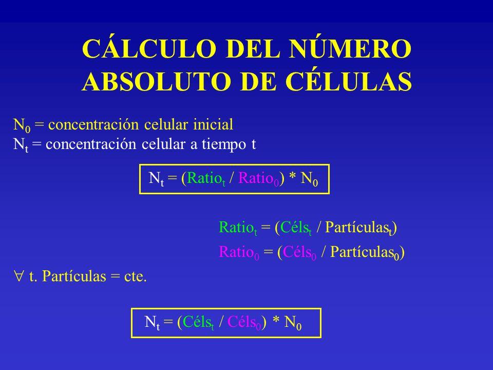 CÁLCULO DEL NÚMERO ABSOLUTO DE CÉLULAS