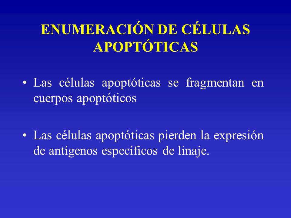 ENUMERACIÓN DE CÉLULAS APOPTÓTICAS