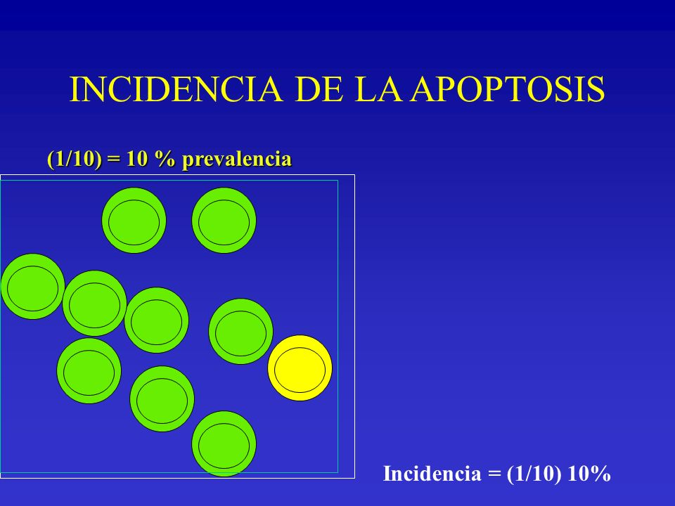 INCIDENCIA DE LA APOPTOSIS
