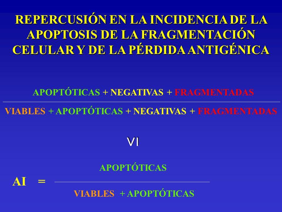REPERCUSIÓN EN LA INCIDENCIA DE LA APOPTOSIS DE LA FRAGMENTACIÓN CELULAR Y DE LA PÉRDIDA ANTIGÉNICA