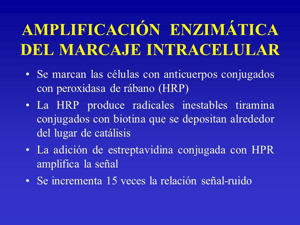 AMPLIFICACIÓN ENZIMÁTICA DEL MARCAJE INTRACELULAR