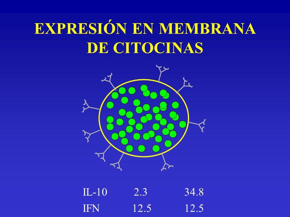 EXPRESIÓN EN MEMBRANA DE CITOCINAS