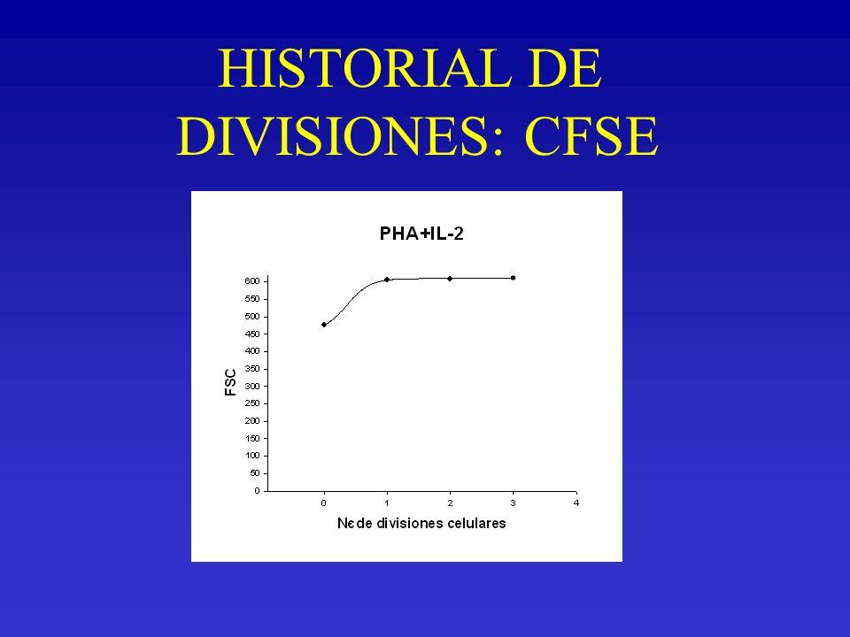 HISTORIAL DE DIVISIONES: CFSE