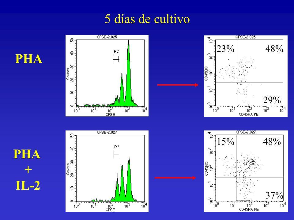 5 días de cultivo 23% 48% PHA 29% 15% 48% PHA + IL-2 37%
