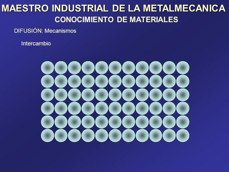 MAESTRO INDUSTRIAL DE LA METALMECANICA
