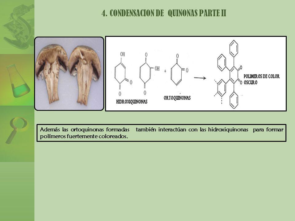 4. CONDENSACION DE QUINONAS PARTE II