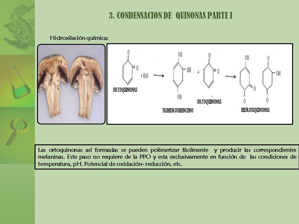 3. CONDENSACION DE QUINONAS PARTE I