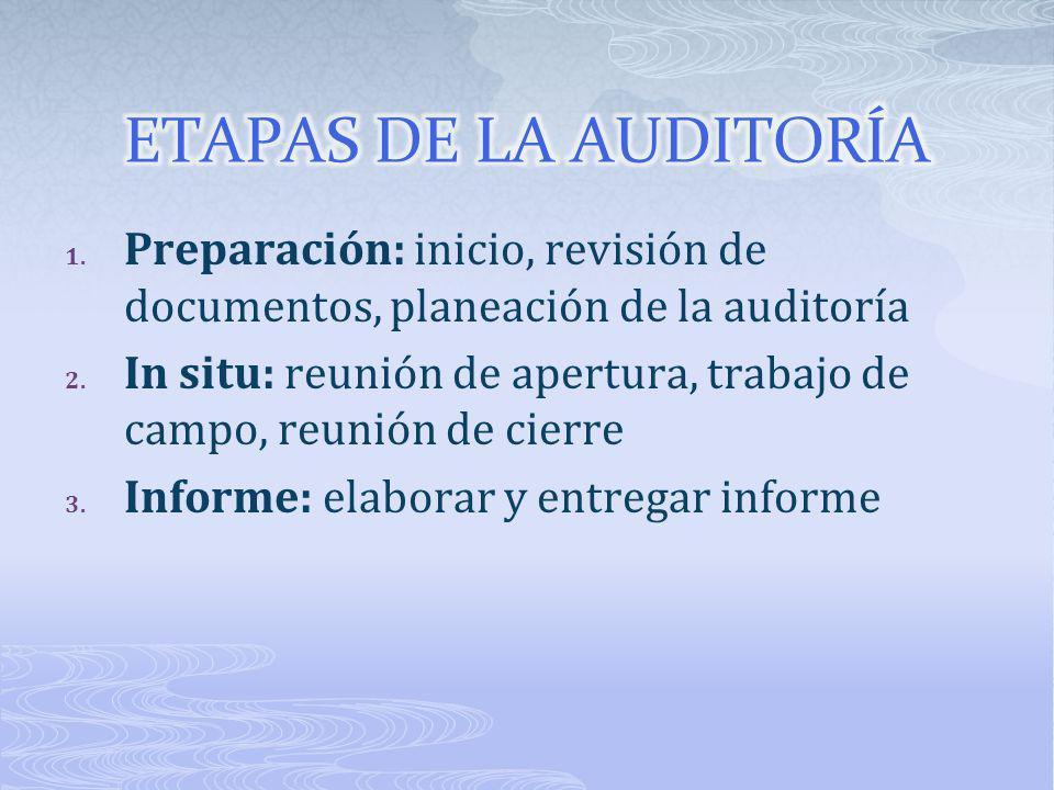 ETAPAS DE LA AUDITORÍA Preparación: inicio, revisión de documentos, planeación de la auditoría.