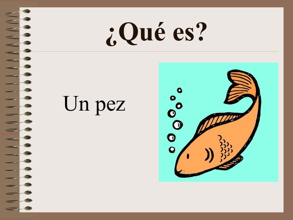 ¿Qué es Un pez