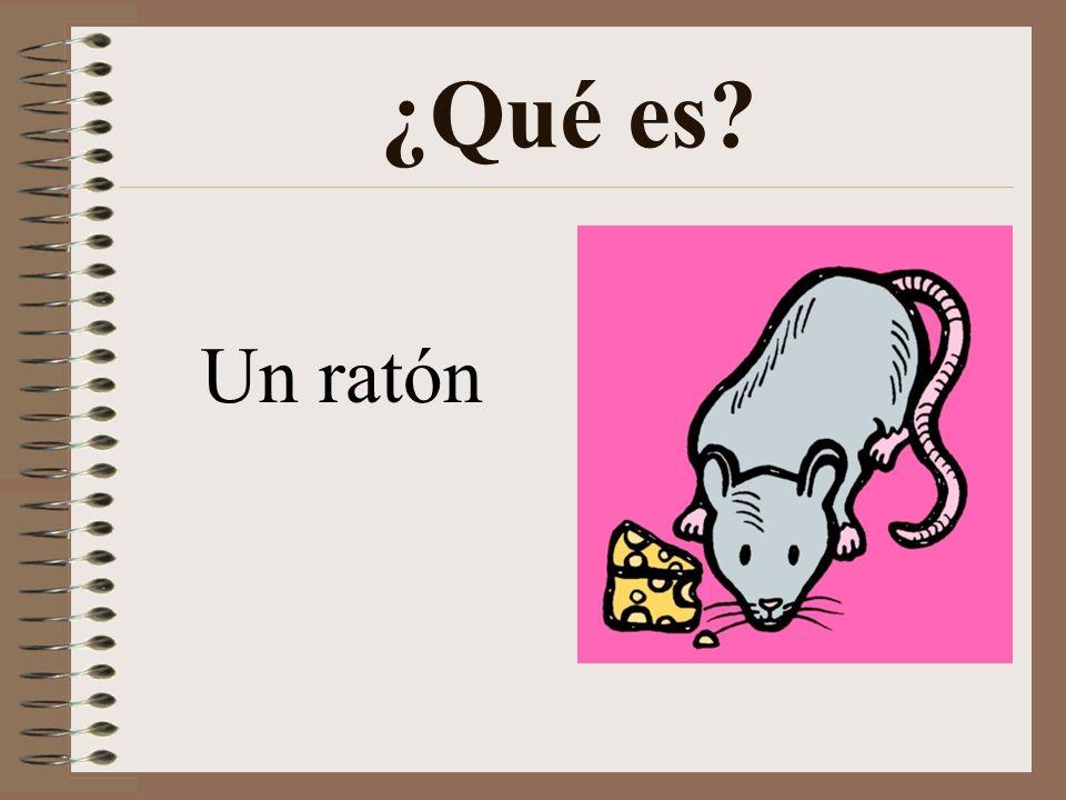 ¿Qué es Un ratón
