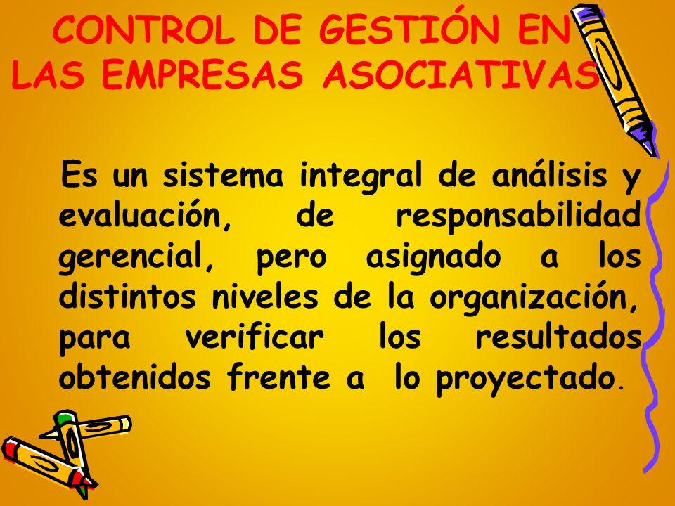 CONTROL DE GESTIÓN EN LAS EMPRESAS ASOCIATIVAS