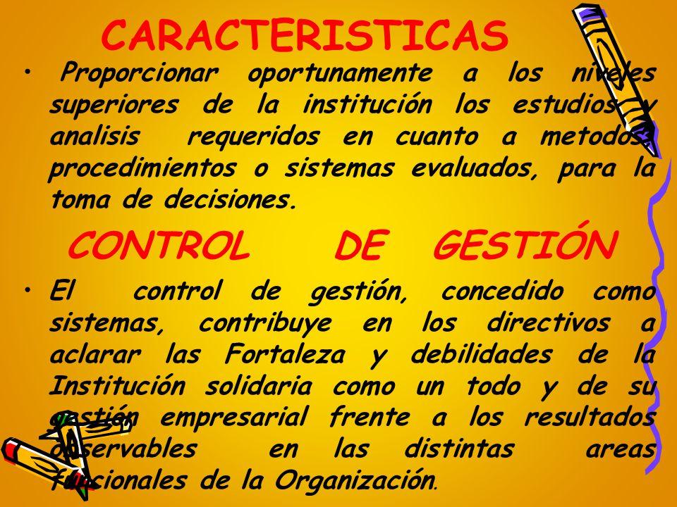 CARACTERISTICAS CONTROL DE GESTIÓN