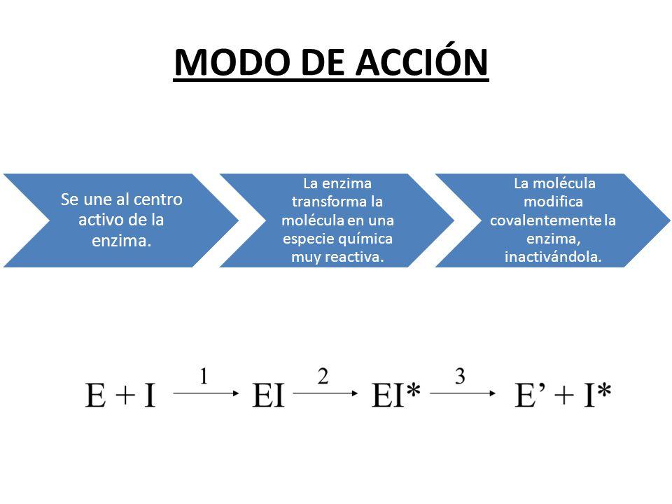 MODO DE ACCIÓN Se une al centro activo de la enzima.