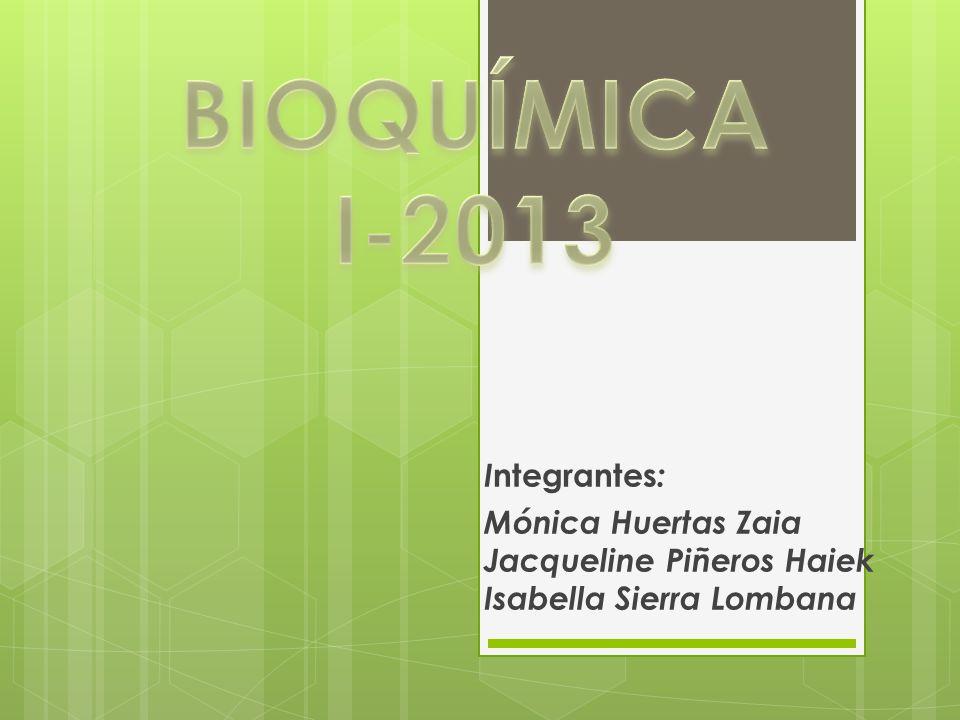 BIOQUÍMICA I-2013 Integrantes: