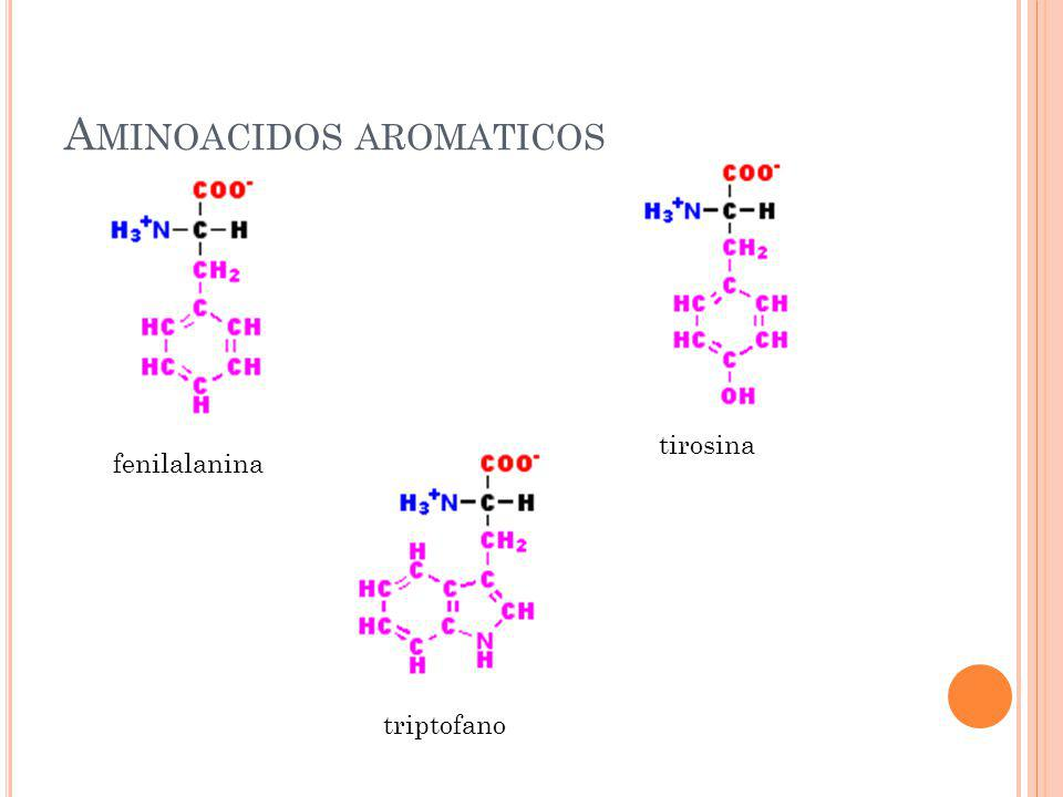 Aminoacidos aromaticos