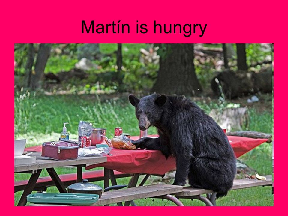 Martín is hungry