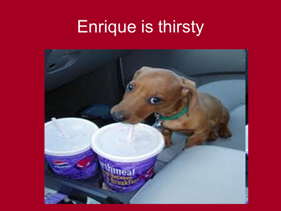 Enrique is thirsty