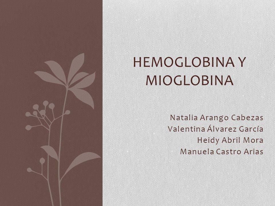 Hemoglobina y mioglobina