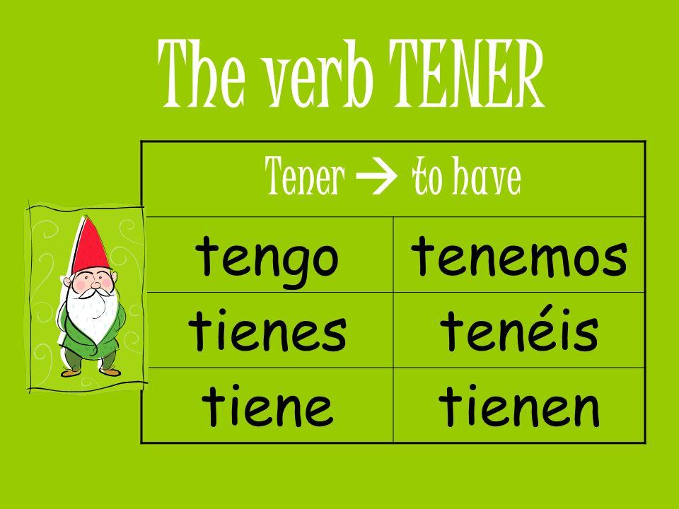 The verb TENER tengo tenemos tienes tenéis tiene tienen