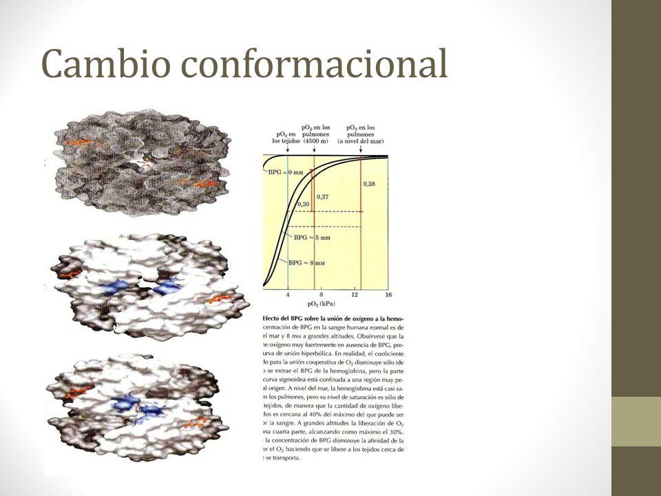 Cambio conformacional