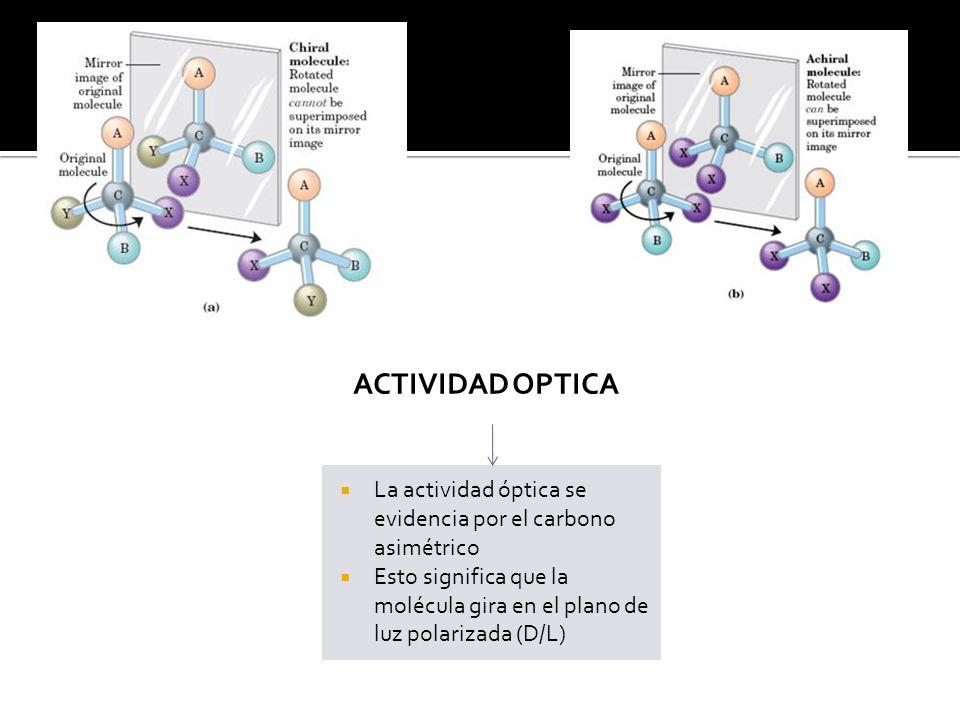 ACTIVIDAD OPTICA La actividad óptica se evidencia por el carbono asimétrico.