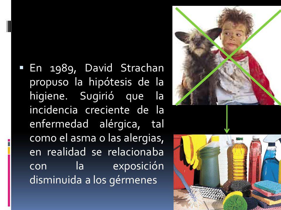 En 1989, David Strachan propuso la hipótesis de la higiene