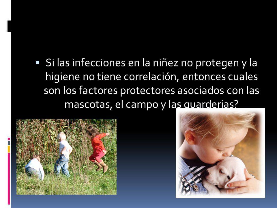Si las infecciones en la niñez no protegen y la higiene no tiene correlación, entonces cuales son los factores protectores asociados con las mascotas, el campo y las guarderias
